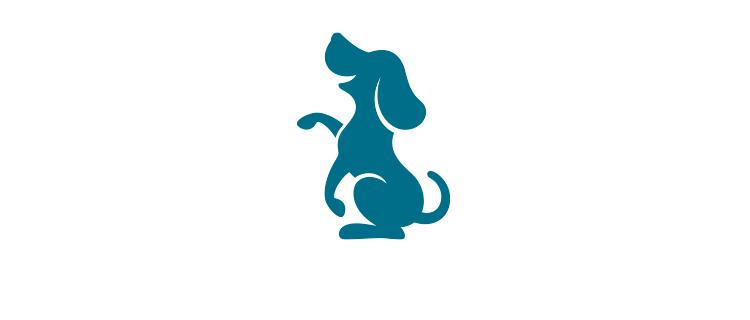 お食事前やお食事後にぜひご利用ください|Oliilio オリイーリオ 大切な愛犬ととっておきの時間をすごせる DOGカフェ&ダイニング